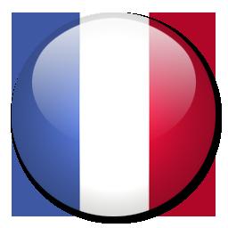 Francja Euro 2016, profil drużyny, składy, sparingi, terminarz